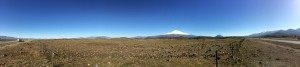 A Pano from the shoulder of Highway 5 of Mt. Shasta